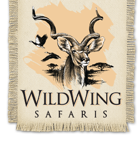 WildWing Safaris